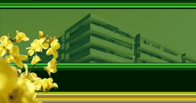 Apartment of Gesmar.es